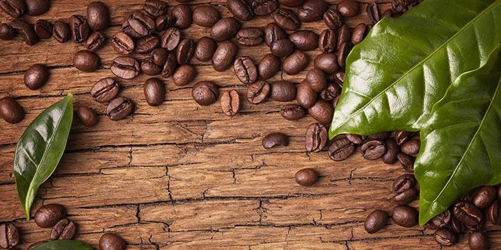 Cà phê Arabica mang những ưu điểm nổi bật nào?